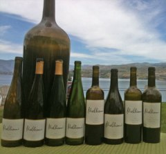 After the tasting. Mellisoni Vineyards, Lake Chelan Washington, Washington Wines
