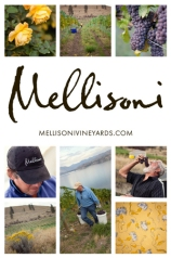 Mellisoni Vineyards photo collage