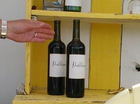 Have some more at Mellisoni Vineyards, Lake Chelan Washington, Lake Chelan wine country